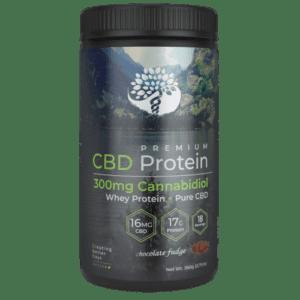Chocolate CBD Whey Protein